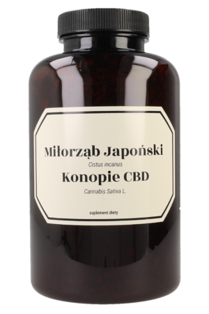Gingko with hemp CBD