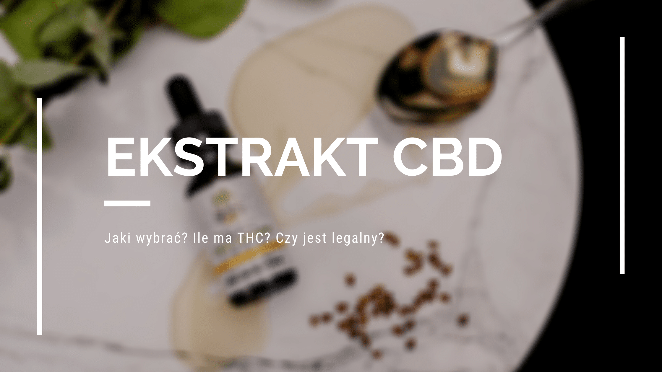 Jaki olejek/ekstrakt CBD wybrać? Ile ma THC? [PORADNIK]